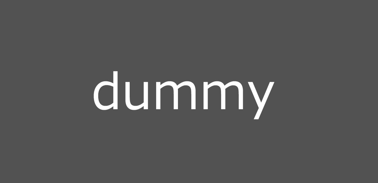 img_dummy01